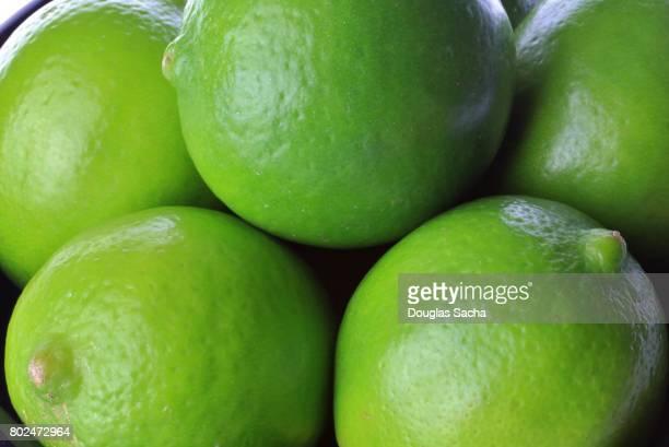 Full frame of Tropical Lime Fruits (citrus aurantiifolia)