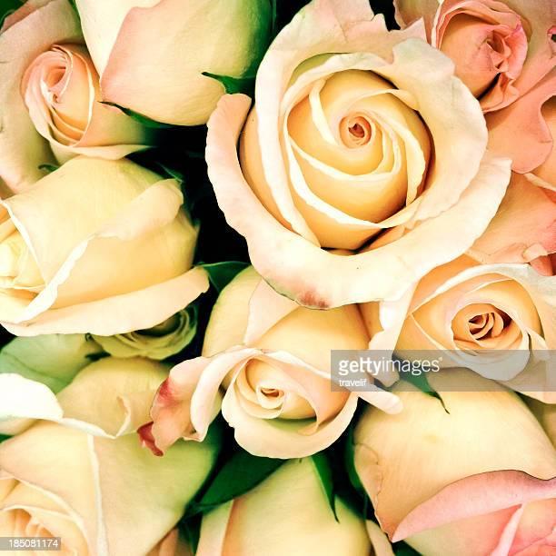 Encuadre completo estilo vintage rose bouquet-máquinas de procesamiento: