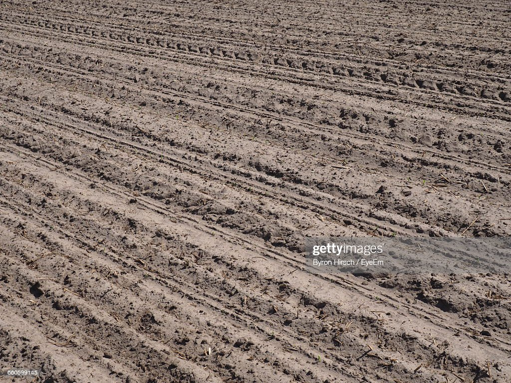Full Frame Shot Of Agricultural Field