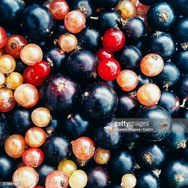 Full Frame Shot Of Blueberries And Red Currants