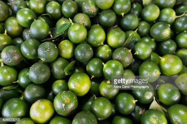 Full frame shot of Fresh Calamansi lime