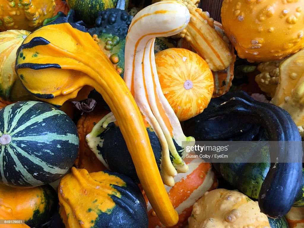 Full Frame Shot Of Pumpkins And Gourds At Farmers Market