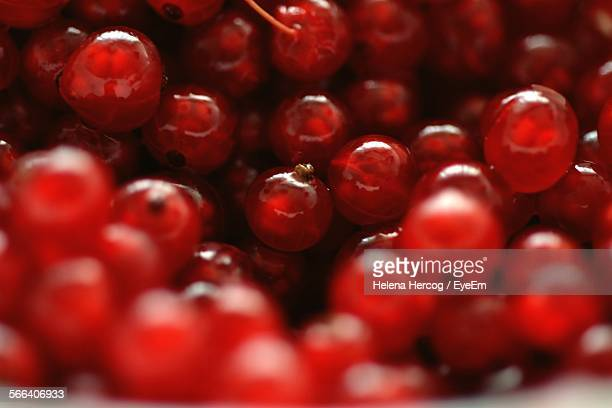 Full Frame Shot Of Red Currants