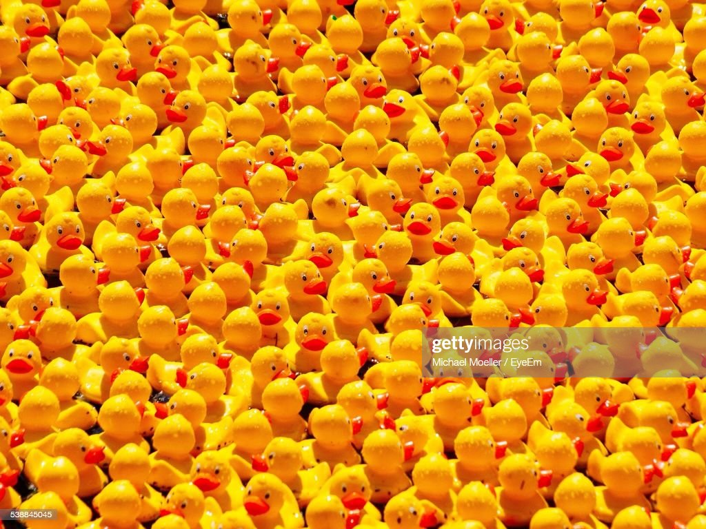 mellow yellow it was all yellow photo album getty images