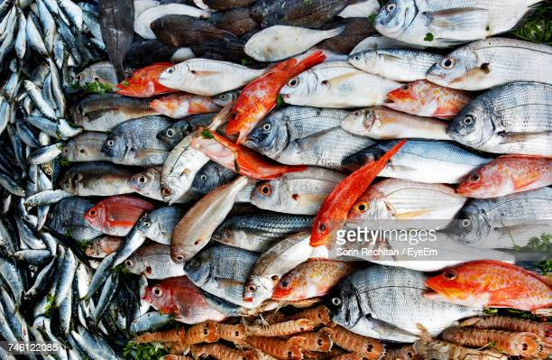 Full Frame Shot Of Various Fish For Sale At Market