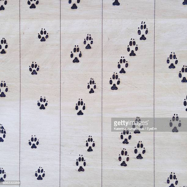 Full Frame Shot Of Wall With Paw Prints