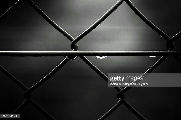 Full Frame Shot Of Wet Chainlink Fence
