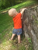 Full Length Of Baby Boy By Tree Stump In Park