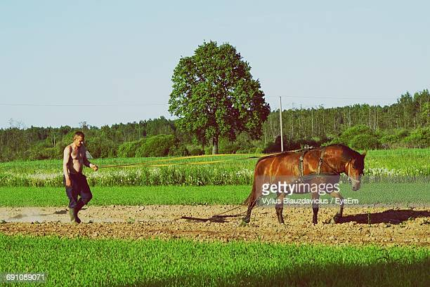Full Length Of Shirtless Farmer Plowing With Horse On Agricultural Field