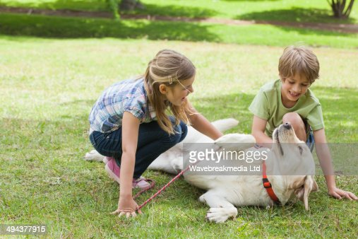 Full length of kids playing with pet dog at park : Stock Photo