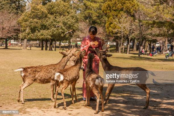 Full Length Of Woman Feeding Deers While Standing On Field