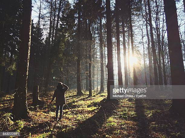 Full Length Rear View Of Girl Standing In Forest On Sunny Day