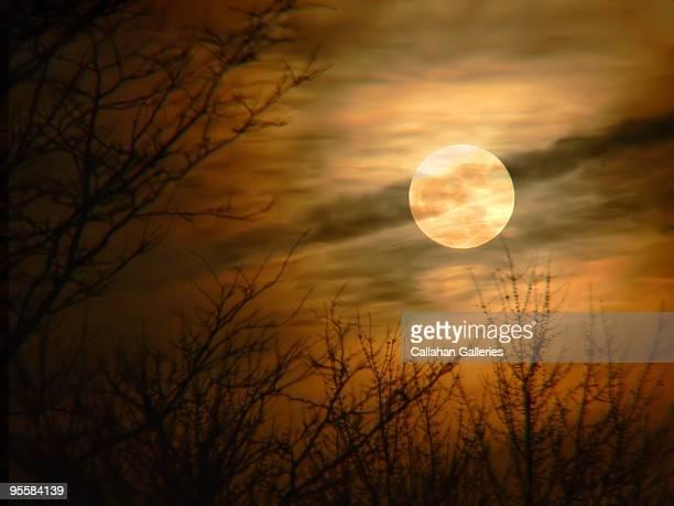 Full moon in autumn colors