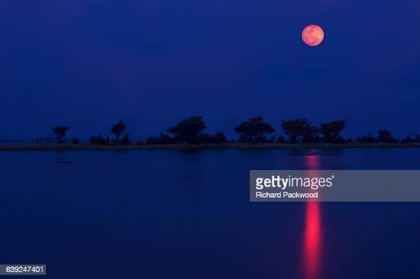 Full moon over Zambezi