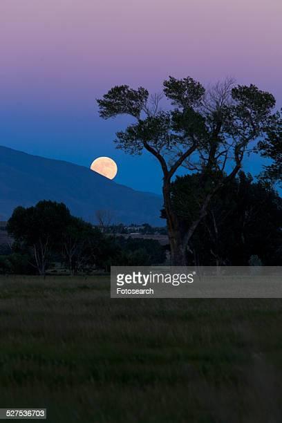 Full moon rising over Sierra Nevada mountains