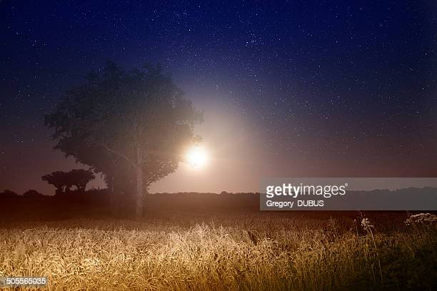 Full moon rising with stars landscape