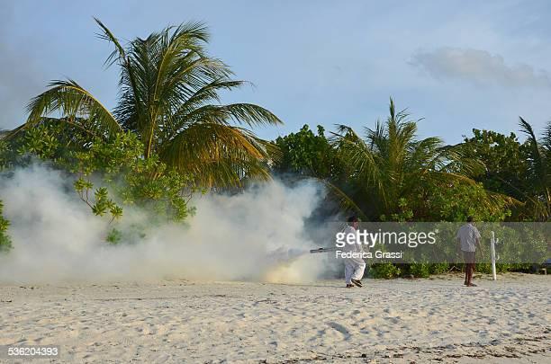 Fumigation on Beach Shrubs