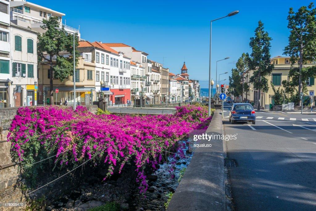 Vista da cidade de mar Funchal : Foto de stock