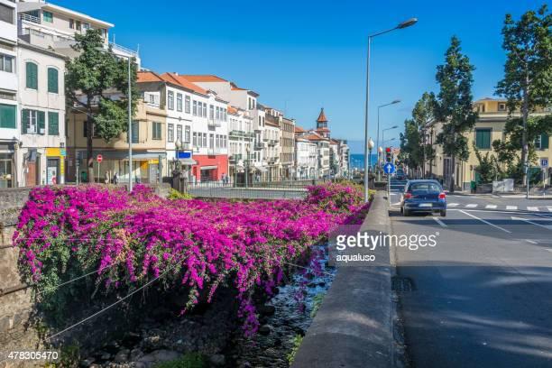 Vista da cidade de mar Funchal