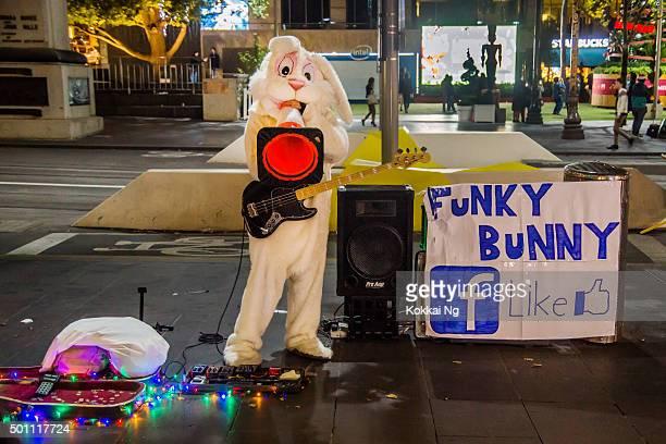Irre Bunny