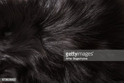 Fur texture : Stock Photo
