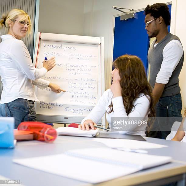 Jeunes étudiants: Enseigner