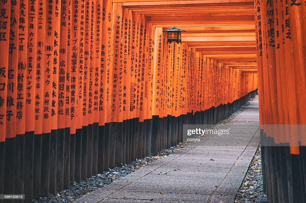Fushimi Inari Shrine Torii in kyoto Japan