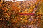 Futami Suspension Bridge in late autumn