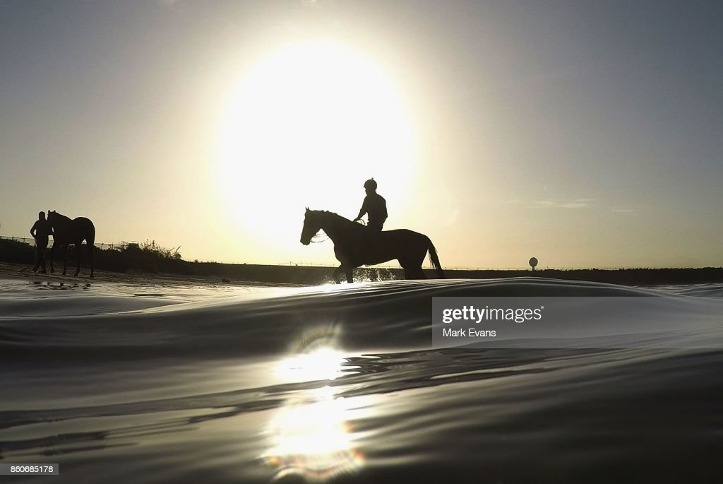 Gai Waterhouse trained horses after having a swim at Botany Bay on October 13, 2017 in Sydney, Australia.