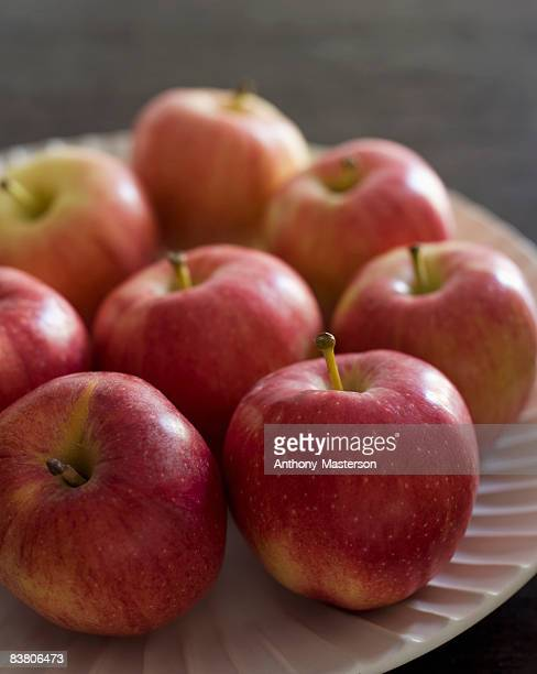 Gala apples (Malus domestica) on a plate