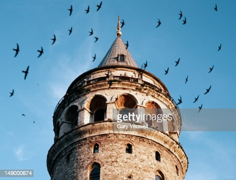 Galata Tower surrounded by birds at sunset