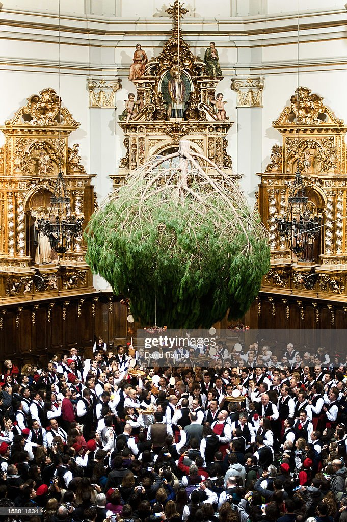 'Galejadors' dance beneath the selected pine tree inside a church during 'La Festa del Pi' (The Festival of the Pine) in the village of Centelles on December 30, 2012 in Barcelona, Spain. Early in the morning men and women born in Centelles, who are named 'Galejadors' wear their traditional costume with the Catalan red hat known as 'Barretina' and carry their shooting muskets as they walk into the forest to chop down a pine tree, load it on an ox cart and take it to the church in the village. There the pine tree is decorated with five bouquets of apples and wafers and hung inside a church until January 6. The tradition has been documented since 1751 and it is believed its origins are related to the trees and the pagan worship of fertilization related the winter solstice.