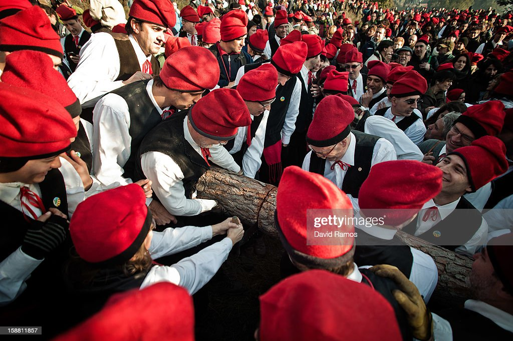 'Galejadors' saw the selected pine tree off during 'La Festa del Pi' (The Festival of the Pine) in the village of Centelles on December 30, 2012 in Barcelona, Spain. Early in the morning men and women born in Centelles, who are named 'Galejadors' wear their traditional costume with the Catalan red hat known as 'Barretina' and carry their shooting muskets as they walk into the forest to chop down a pine tree, load it on an ox cart and take it to the church in the village. There the pine tree is decorated with five bouquets of apples and wafers and hung inside a church until January 6. The tradition has been documented since 1751 and it is believed its origins are related to the trees and the pagan worship of fertilization related the winter solstice.
