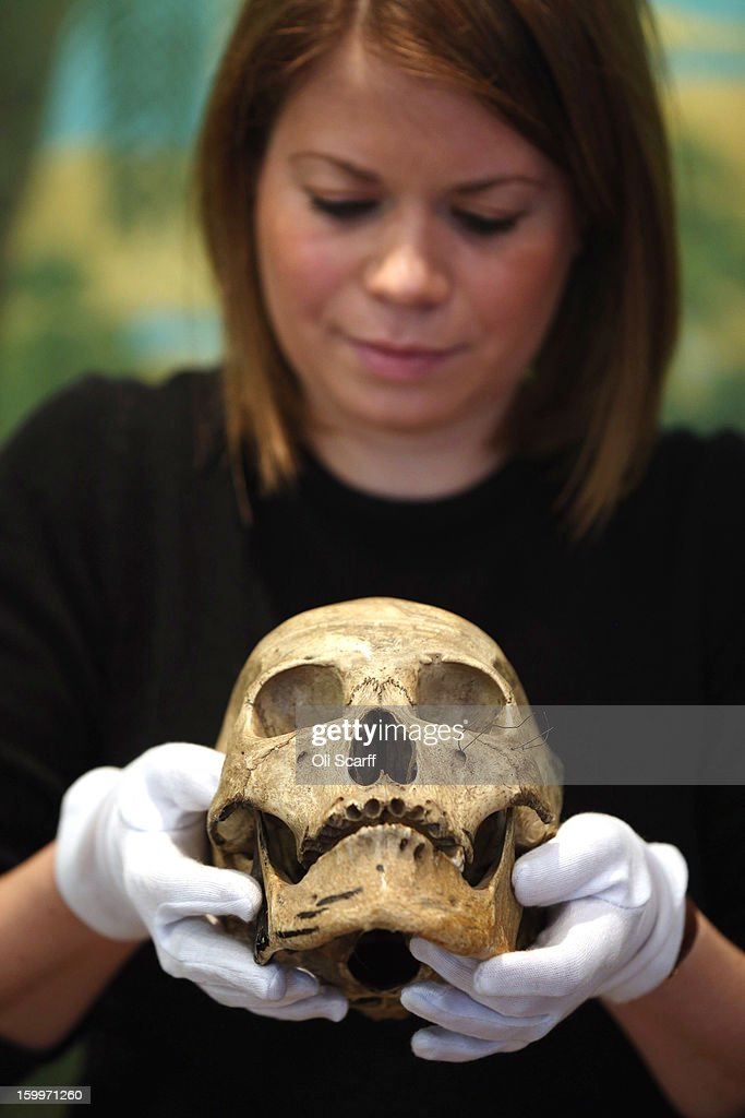 A gallery assistant at Bonhams auction house admires an engraved human skull, which is expected to fetch 900 GBP in their forthcoming 'Gentleman's Library Sale', on January 24, 2013 in London, England. The auction includes an eclectic mix of rare items such as a pygmy hippo skeleton, a cigar that belonged to Winston Churchill and a MI9 spy catalogue. It will take place in Bonhams Knightsbridge on January 29 and 30, 2013.