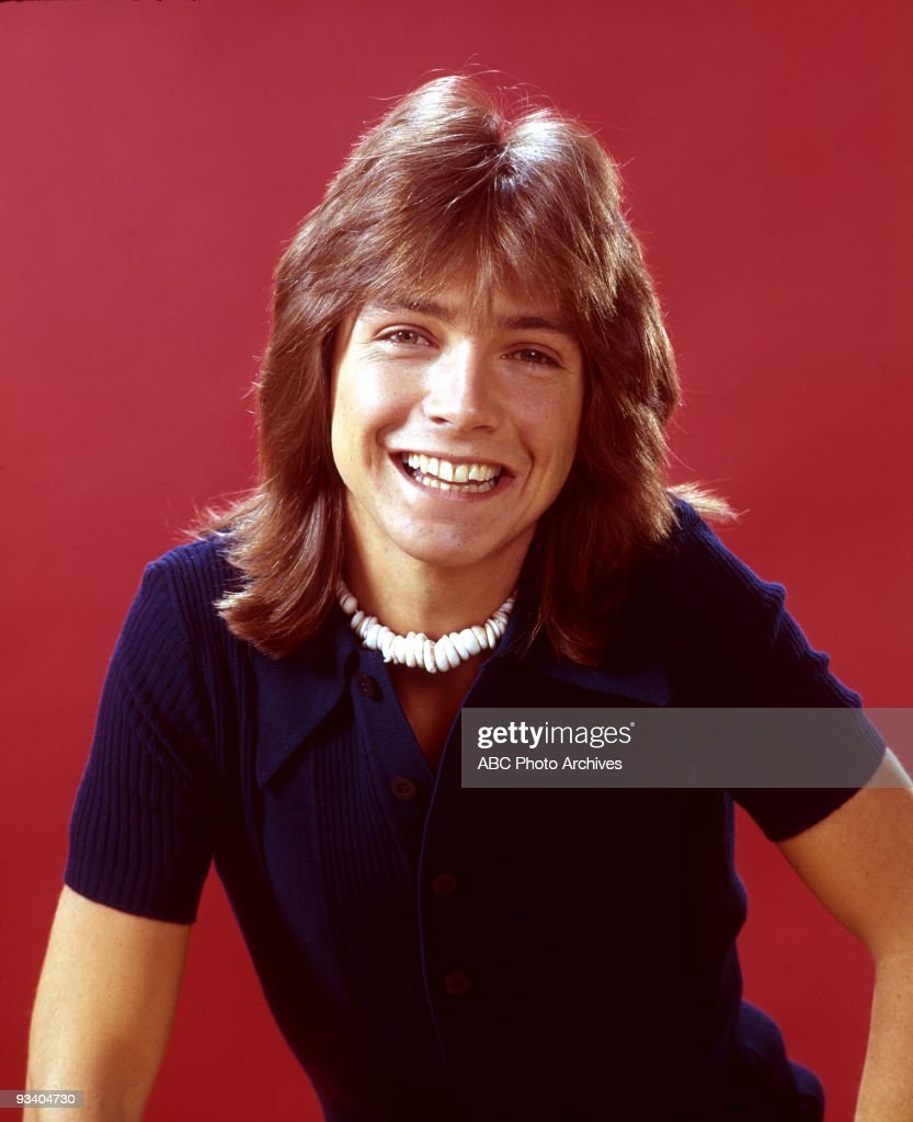Not to be outdone, the male layered shag had a prominent spokesperson in David Cassidy, who wore the look on the TV show 'The Partridge Family.'