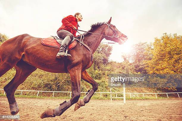 Galloping horse with female rider