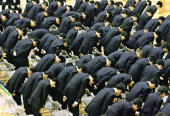 WITH STORY 'AFPLIFESTYLEJAPANEDUCATION' Some 123 12yearold junior high school boys bow their heads to Toyota Motor honorary chairman Shoichiro Toyoda...