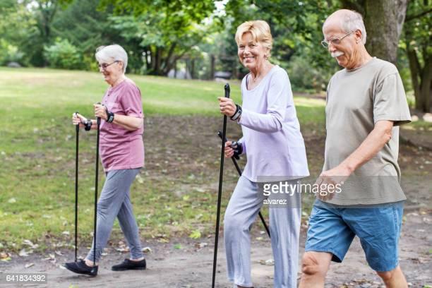 Gappy group of senior walking in park