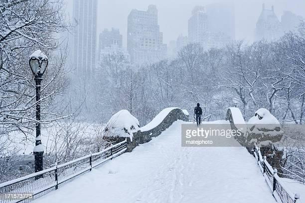 Neve molto forte ponte di Gapstow Central Park
