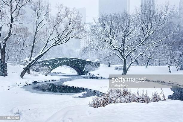 Pont Gapstow tempête de neige à Central Park