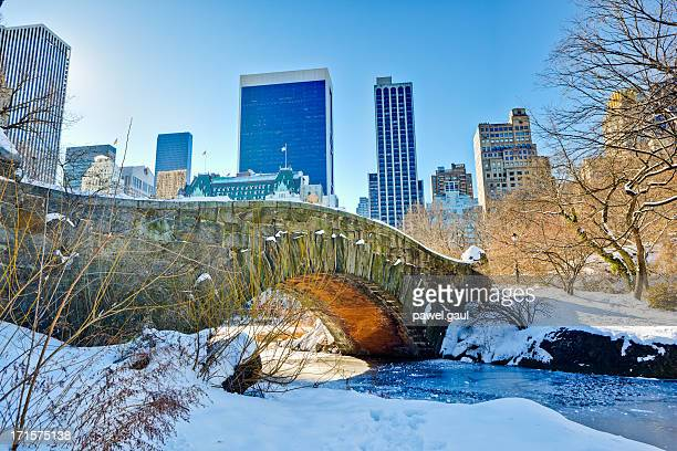 Gapstow bridge in winter by day