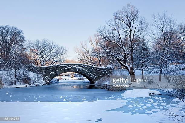 Ponte di Gapstow alba