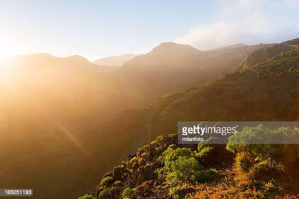 Nationalpark Garajonay, La Gomera, Kanarische Inseln, Spanien