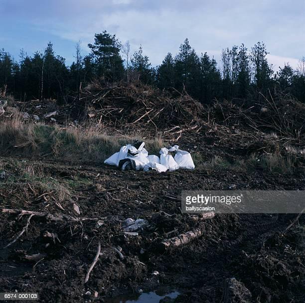 Garbage Bags in Field
