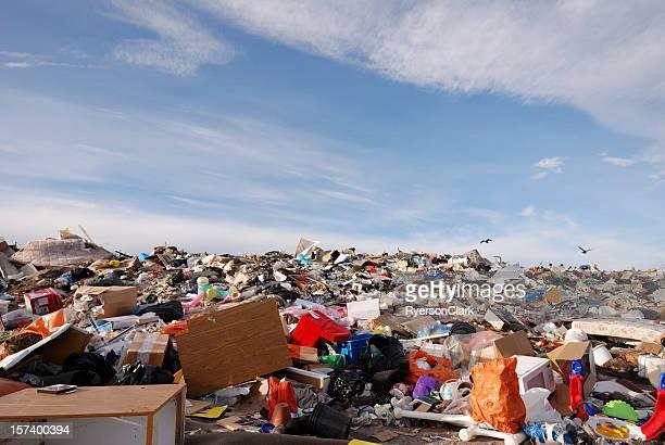 ゴミ捨て場でカナダの北極街のイエローナイフます。