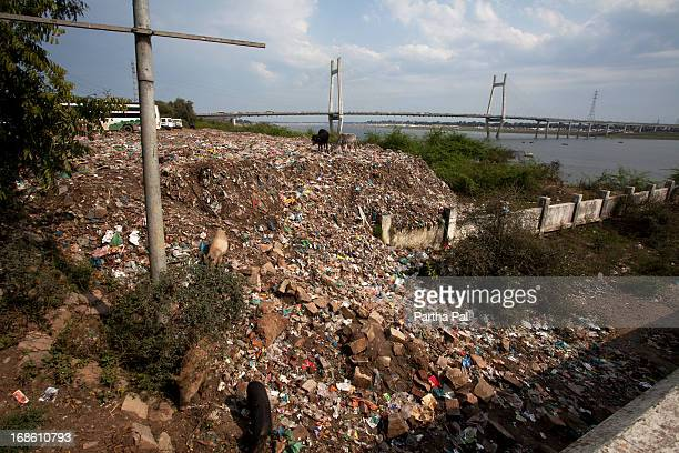 Garbage Dumped by the side of Yamuna River