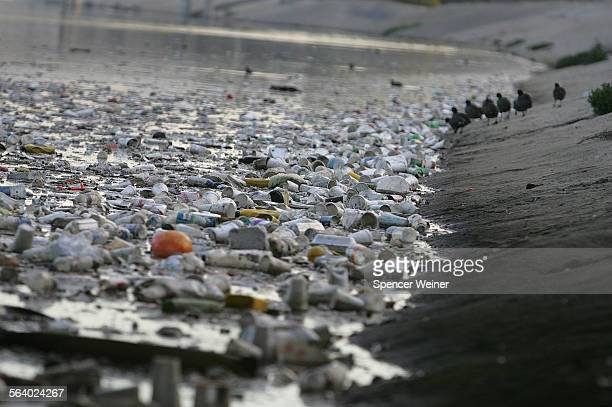 Garbage floating towards the ocean along Ballona Creek A sewage spill closed of parts of Venice Beach and Dockweiler Beach on Thursday February 15...