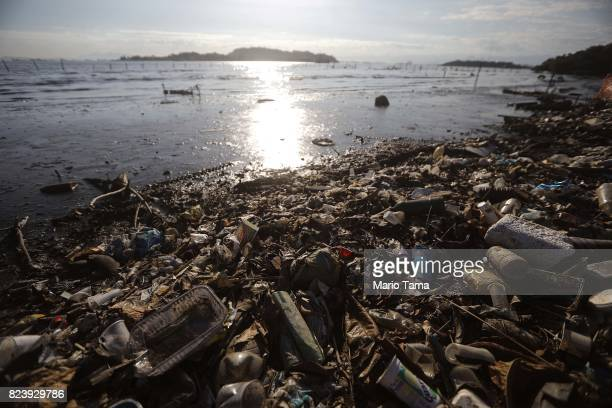 Garbage rests along the coast of the polluted Guanabara Bay on July 25 2017 in Niteroi Brazil Nearly one year after Rio hosted the first Olympic...