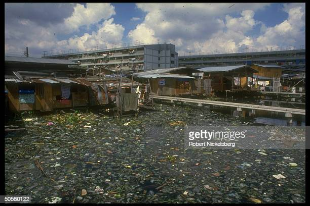 Garbagestrewn waters in front of the makeshift housing of the Klong Toey slum
