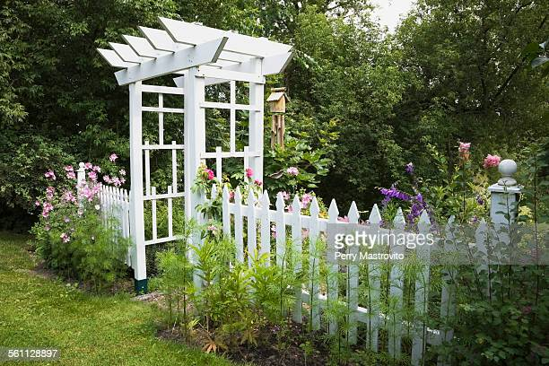 Garden arbour and white picket fence